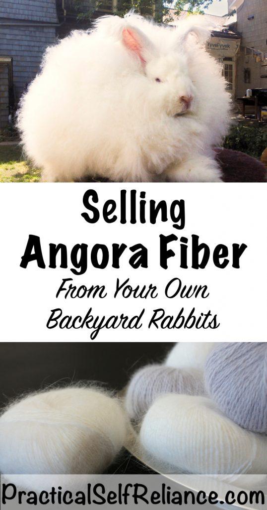 Selling Angora Fiber