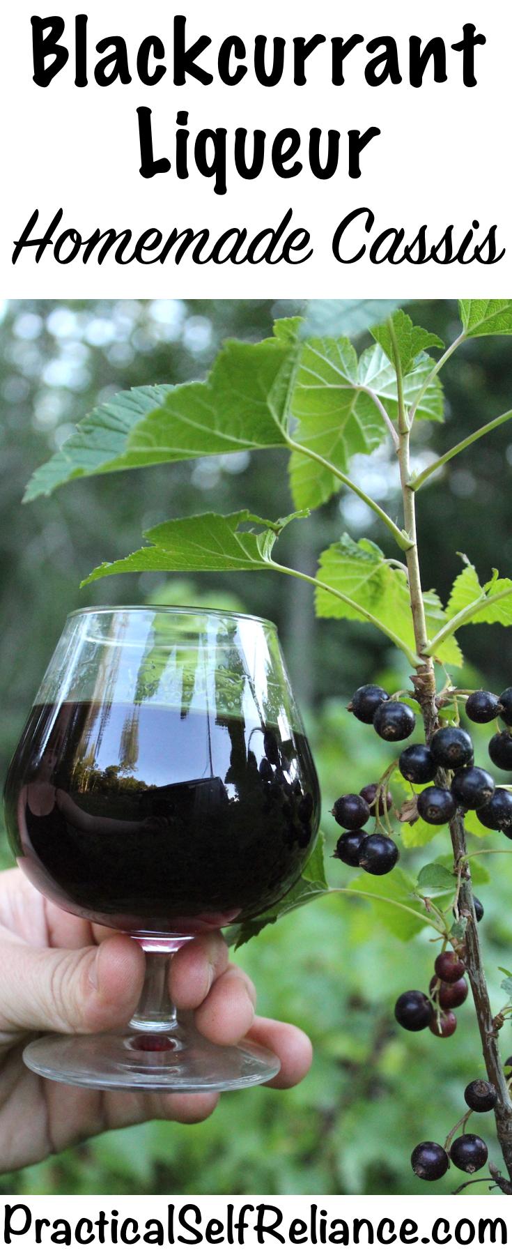 Homemade Blackcurrant Liqueur ~ DIY Cassis Recipe