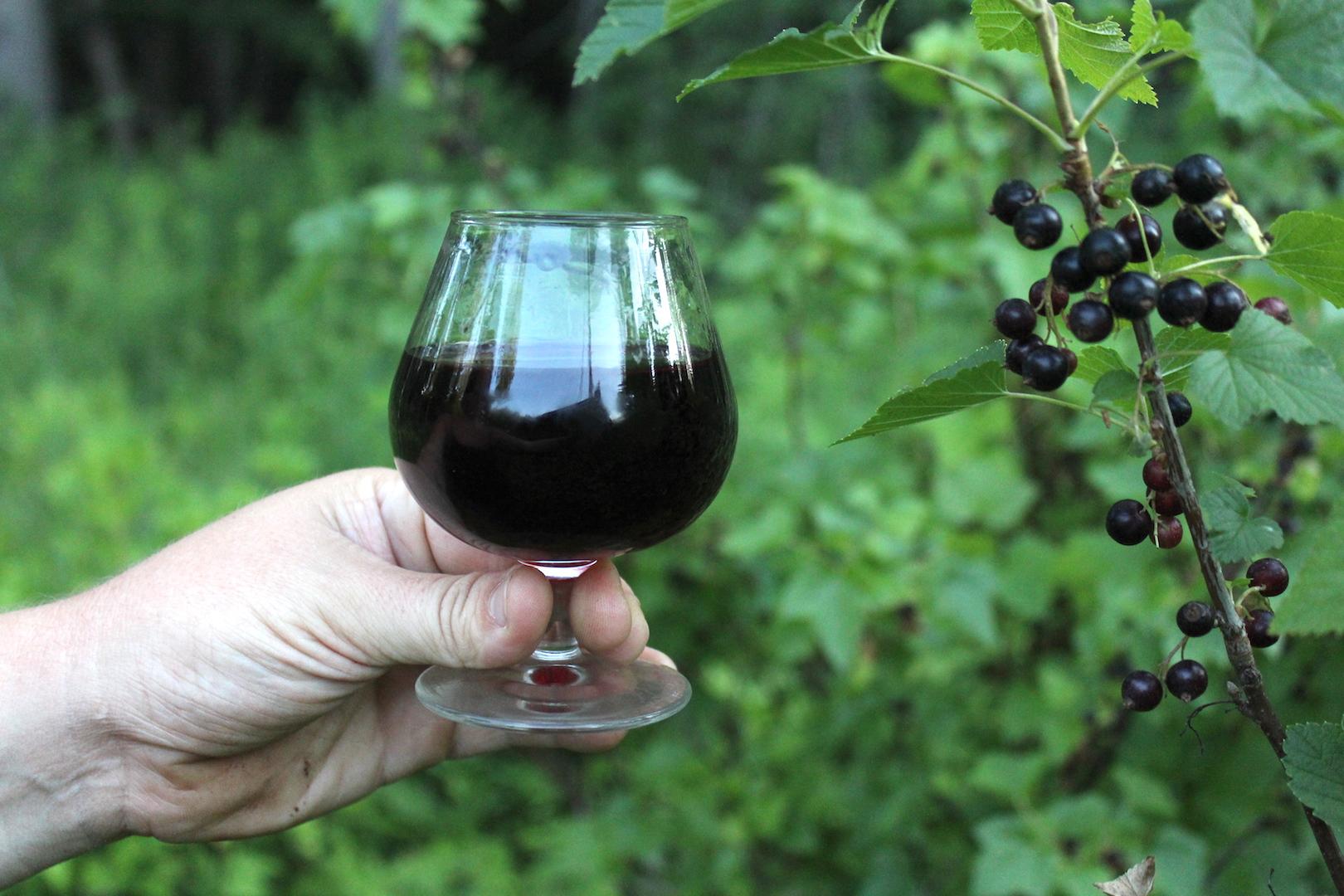 Homemade Blackcurrant Liqueur Recipe