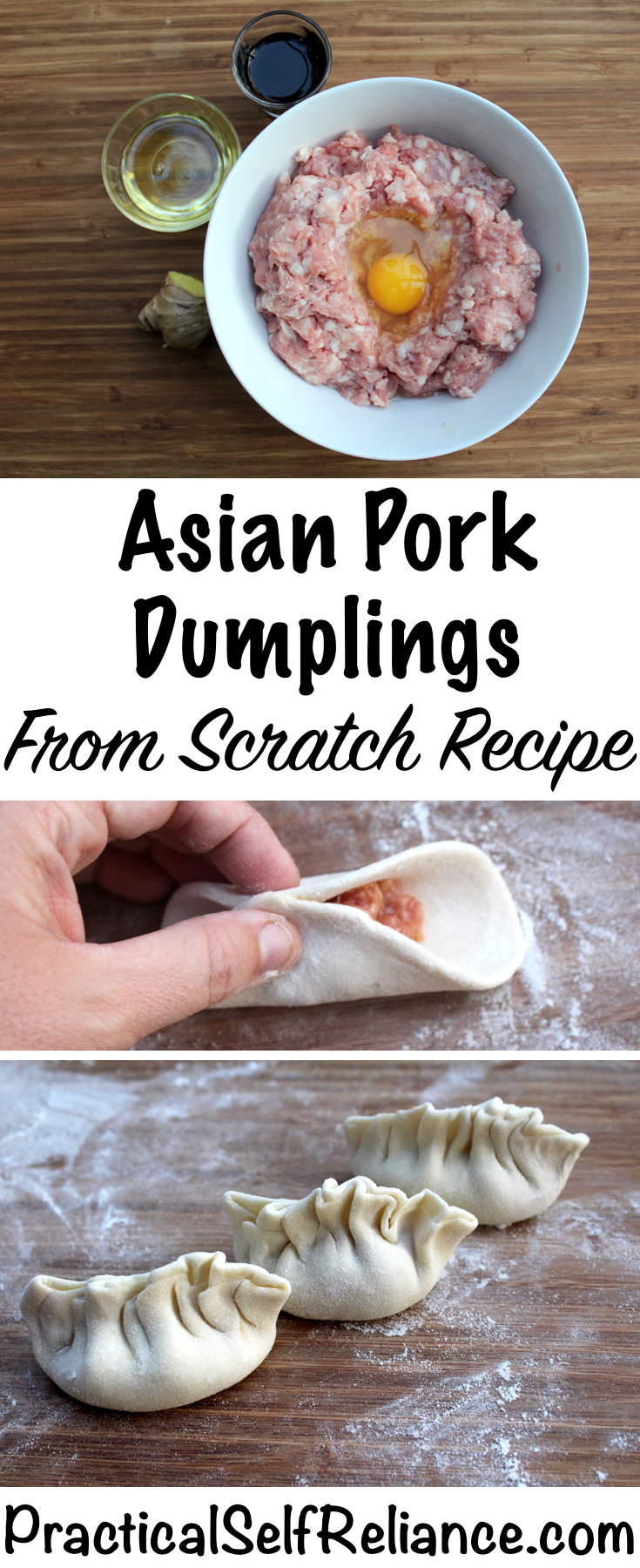Asian Pork Dumplings - From Scratch Recipe with Homemade Dumpling Wrappers