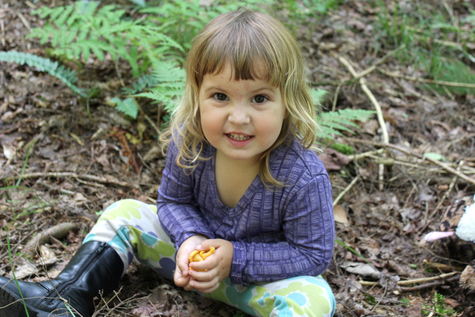 Foraging chanterelles with kids
