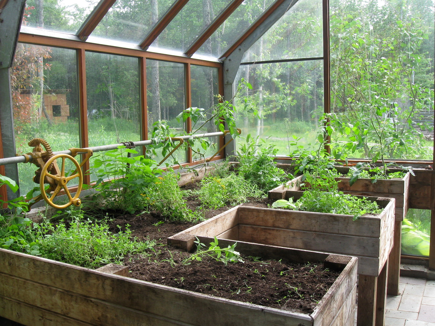 Attached Greenhouse: Pros And Cons