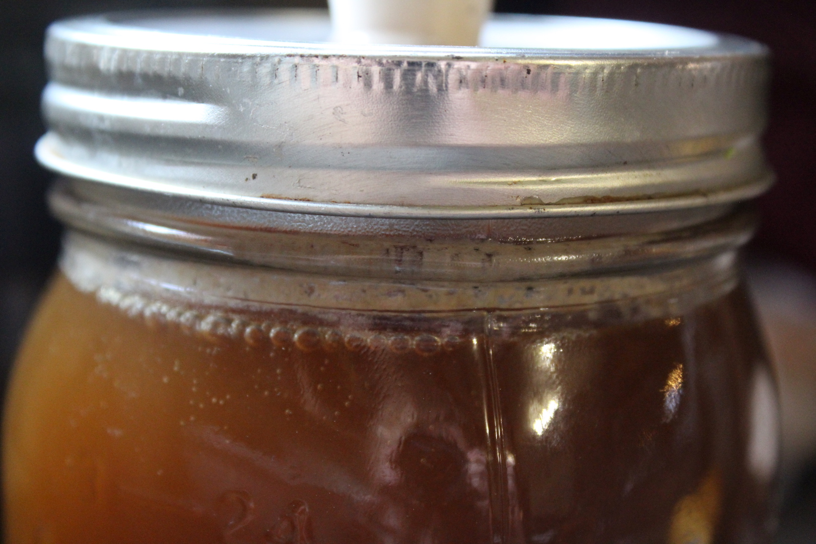 Homemade Birch Beer with Birch Sap or Birch Syrup