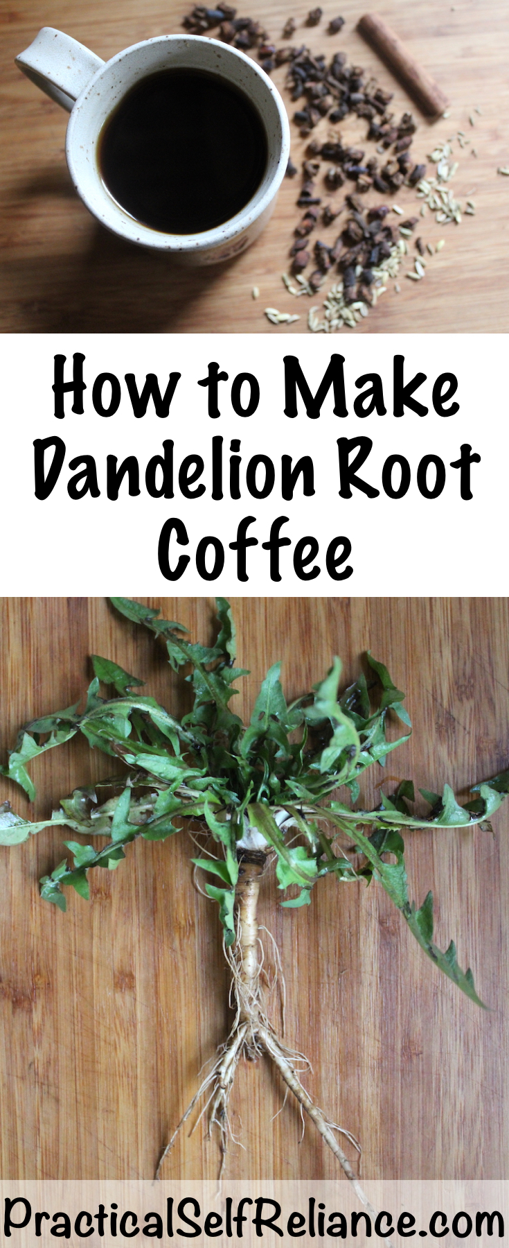 How to Make Dandelion Root Coffee ~ With roasted dandelions ~ wild foraged food