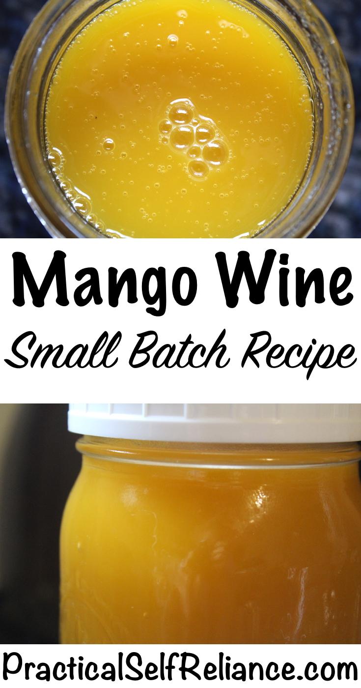 Homemade Mango Wine ~ Small Batch Recipe