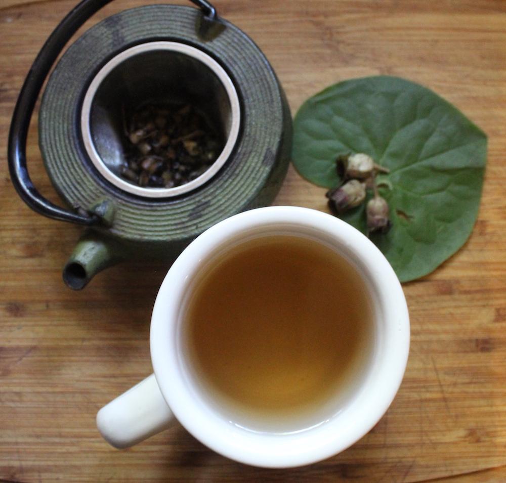 Wild Ginger Tea