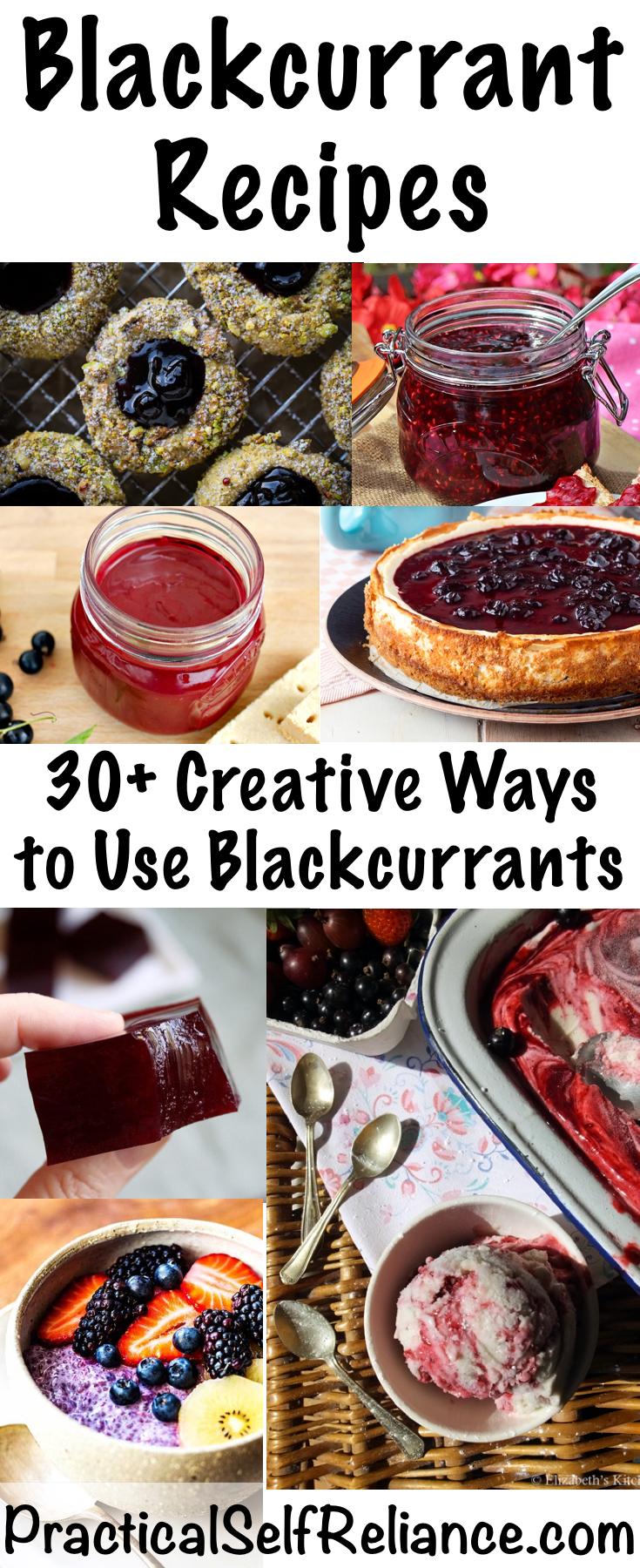 Blackcurrant Recipes ~ 30+ Creative Ways to Use Blackcurrants