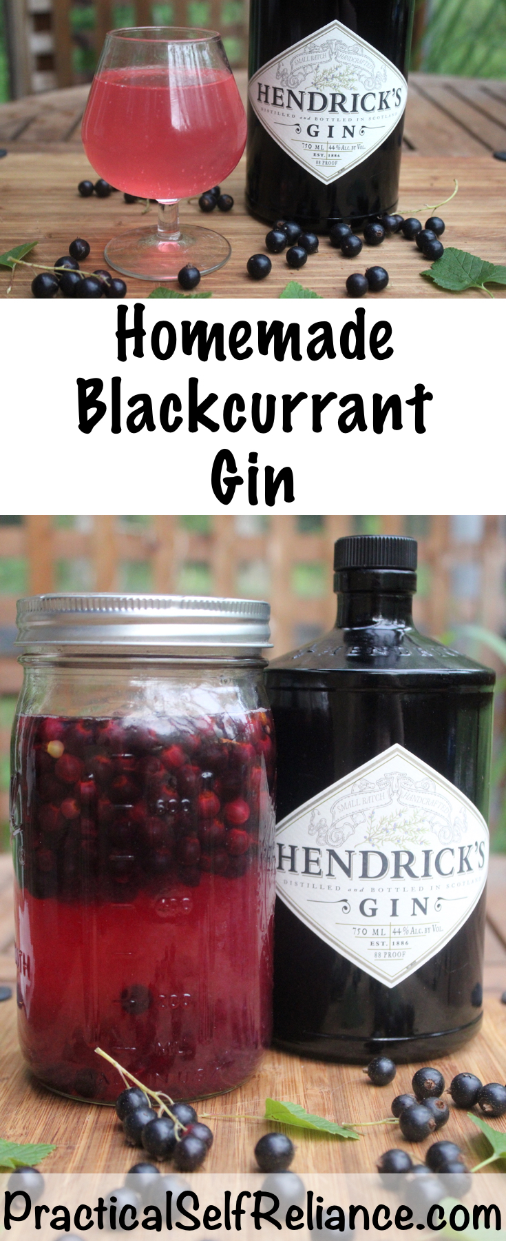 Homemade Blackcurrant Gin