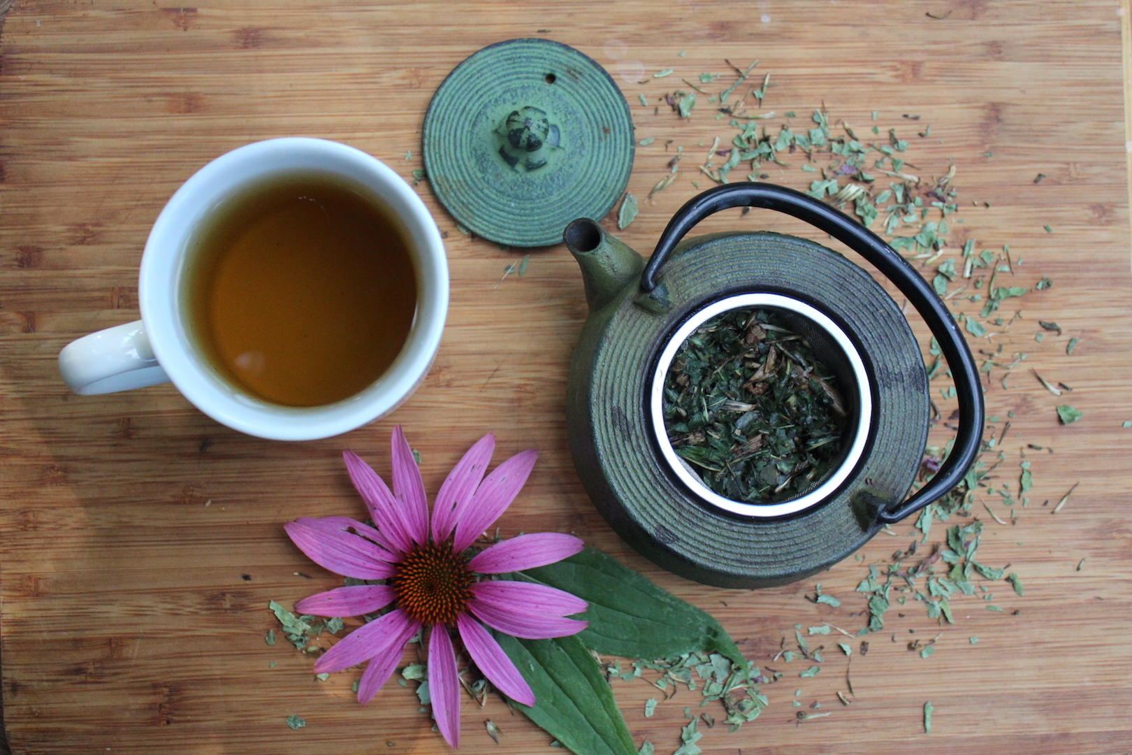 How to Make the Perfect Cup of Echinacea Tea