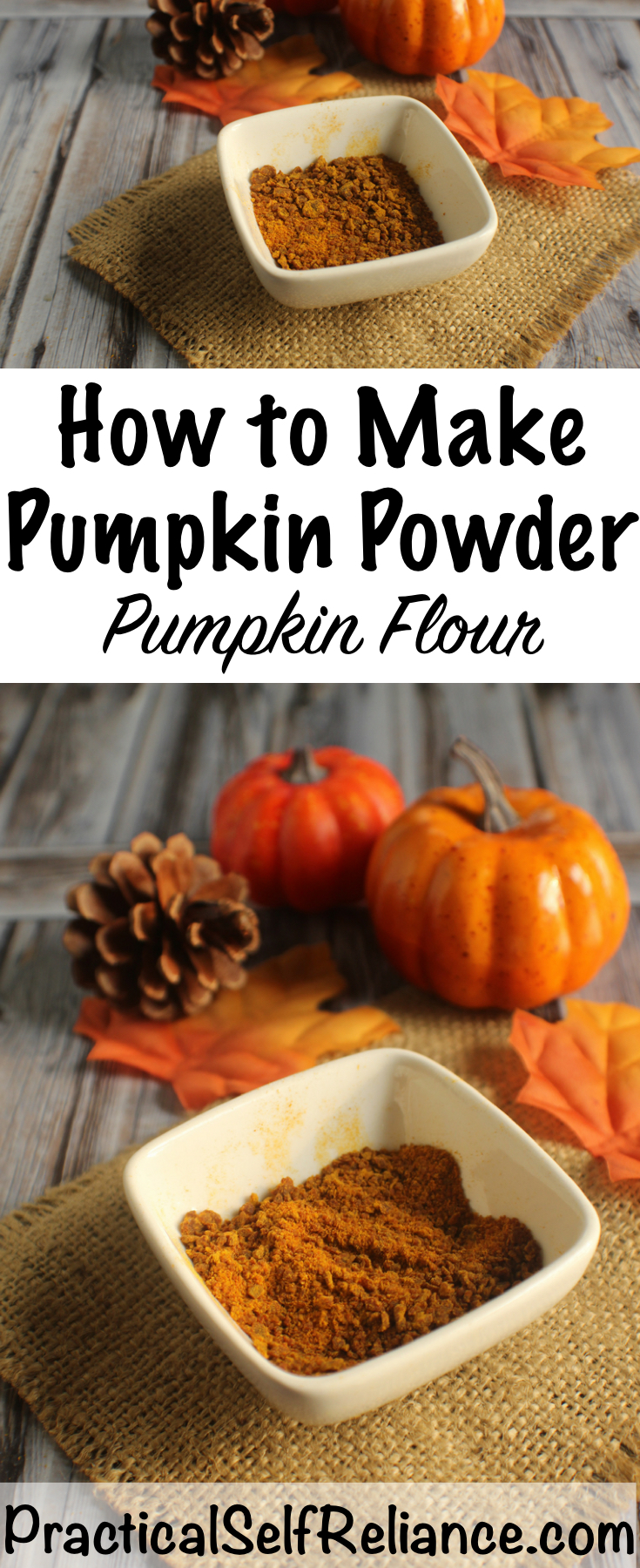 How to Make Pumpkin Powder (Pumpkin Flour) ~ Dehydrating Pumpkin Puree