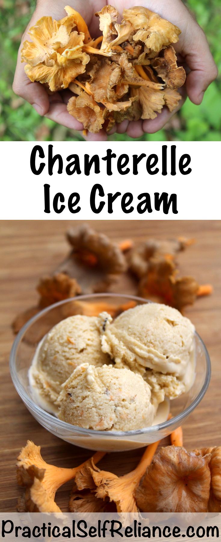 Homemade Chanterelle Ice Cream Recipe ~ Chanterelle Mushroom Ice Cream ~ Chanterelle Dessert