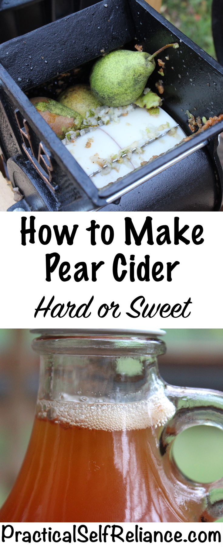 How to Make Pear Cider ~ Hard or Sweet ~ Homemade Perry