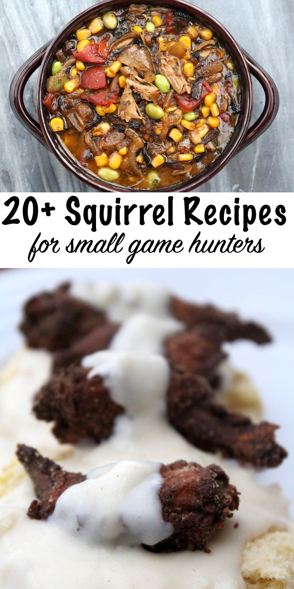20 + Squirrel Recipes for Small Game Hunters