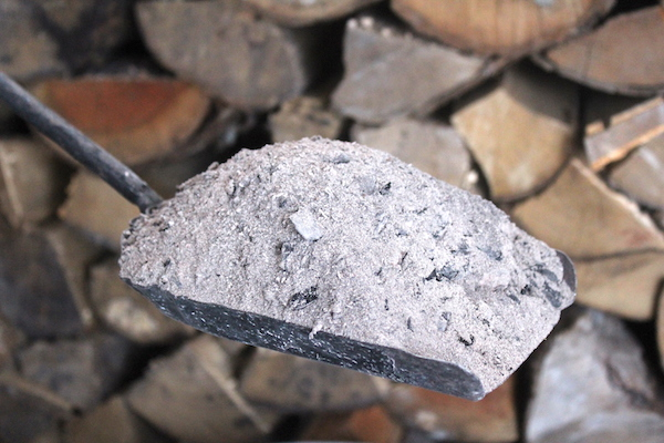 40+ Uses for Wood Ash