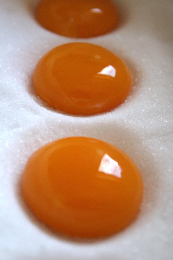 Curing Egg Yolks in Salt