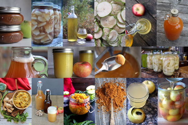 30+ Ways to Preserve Apples