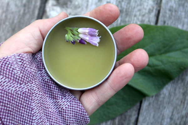 How to Make Comfrey Salve (and Why You Should!)