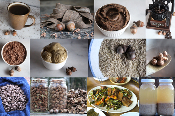 Eating Acorns: 60+ Acorn Recipes from Around the World