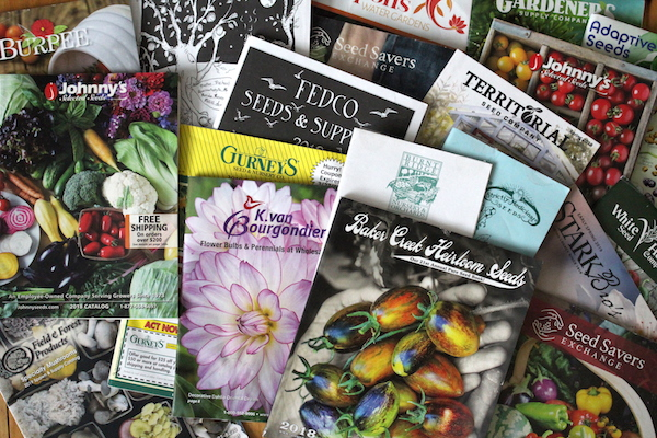 90+ Free Seed Catalogs (& Nursery Catalogs Too!)