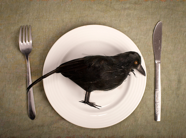 How to Eat Crow (Literally)