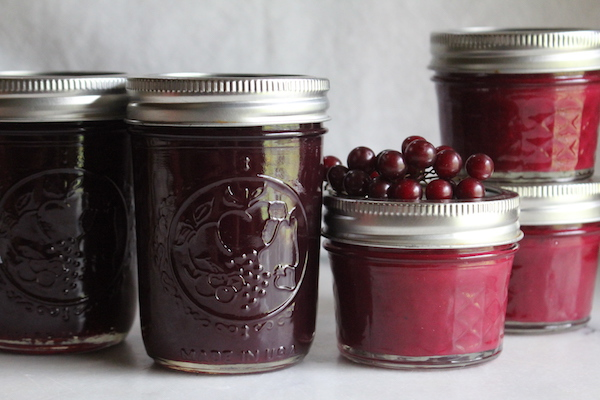Chokecherry Jelly (and Jam!)