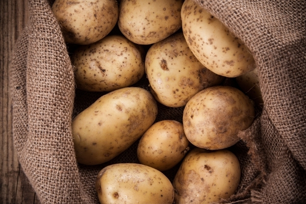 Beginners Guide to Root Cellaring (without Root Cellar!)