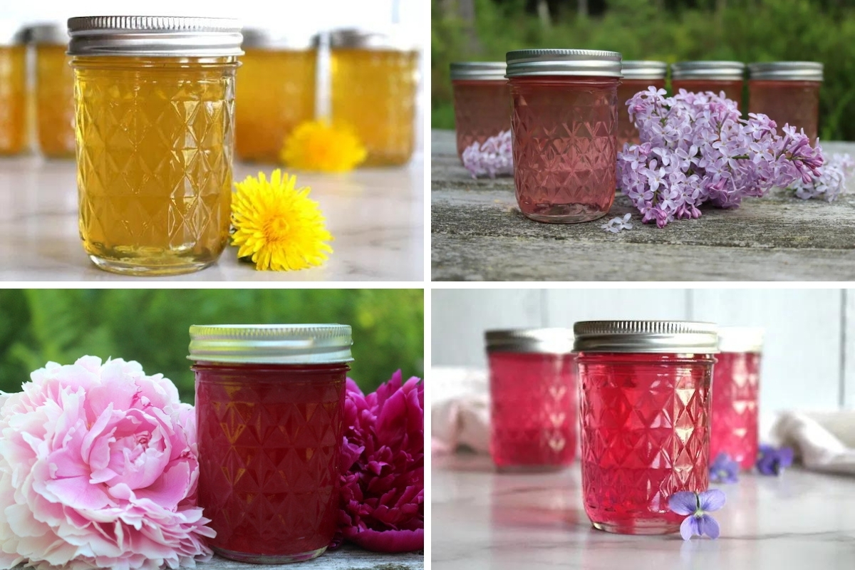 How to Make Flower Jelly (with 20+ Recipes!)